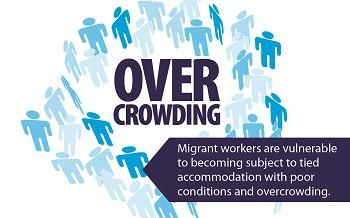 Over crowding infographic