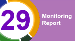 Monitoring Report 29